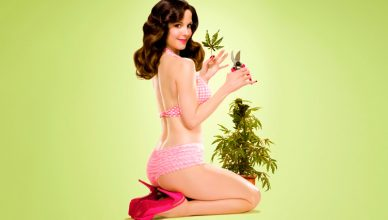 Por qué la marihuana debe ser legalizada