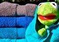 Los microbiólogos explican cada cuánto tiempo hay que lavar las toallas.